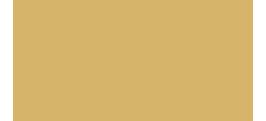 E Fighet Logo